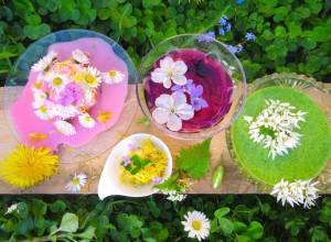 IMG_Blütenmenü